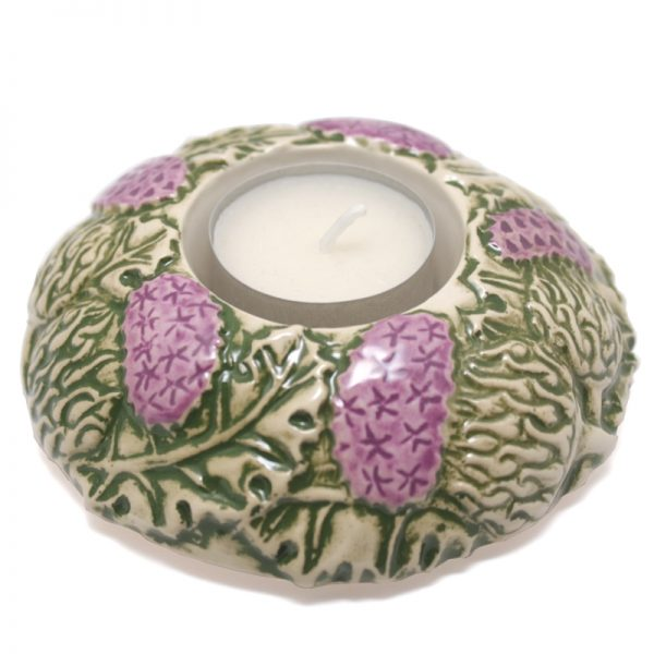 Thistle Candle-cup