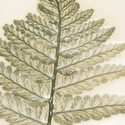 Pressed Leaf
